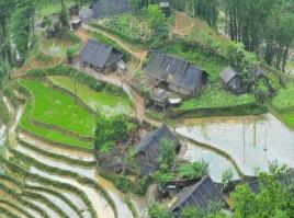 Sapa & Ethnic Market - TOP CHOICE