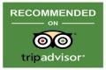 Classy Travel Vietnam on Tripadvisor
