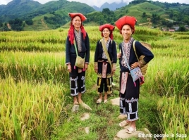 Sapa - O/N in Hotel - Recommended - 2D3N