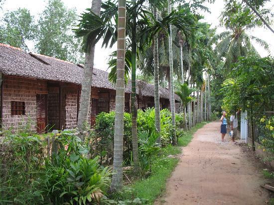 Mekong Delta Homestay Tours Options Classy Travel Vietnam
